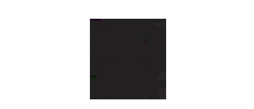 logo-ale-giorgini